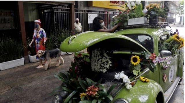 Woman Converts Her Beetle into a Flower Shop and Becomes Instant Hit in Pandemic-Hit Brazil