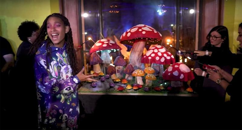 Willow Smith at her 19th birthday party | Will Smith/Youtube