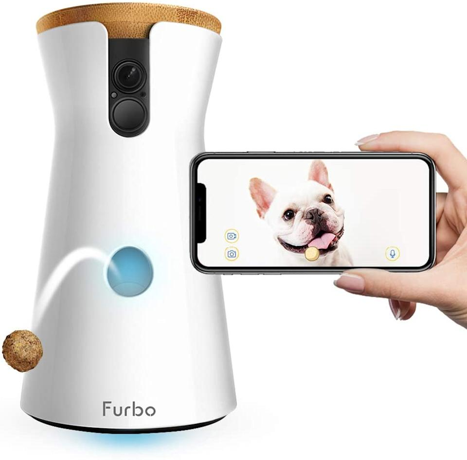 Furbo HD Dog Camera with Treat Tosser (Photo: Chewy)