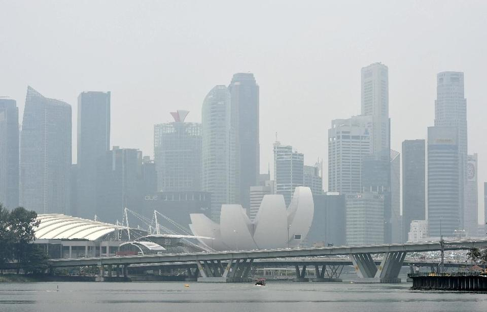 Forest fires in Indonesia produced acrid smog that shrouded Singapore, Malaysia and other parts of the region for weeks in 2015 (AFP Photo/Roslan Rahman)