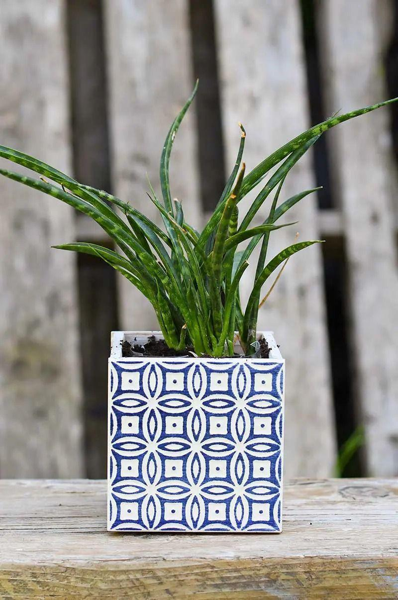 """<p>For this easy project, all you have to do is glue gorgeous patterned tiles together to form a square container. Make a few planters in different patterns for an eclectic look. </p><p><strong>Get the tutorial at <a href=""""https://www.pillarboxblue.com/moroccan-planters/"""" rel=""""nofollow noopener"""" target=""""_blank"""" data-ylk=""""slk:Pillar Box Blue"""" class=""""link rapid-noclick-resp"""">Pillar Box Blue</a>.</strong></p><p><a class=""""link rapid-noclick-resp"""" href=""""https://go.redirectingat.com?id=74968X1596630&url=https%3A%2F%2Fwww.walmart.com%2Fip%2FGorilla-Super-Glue-Clear-Gel-15-Gram%2F104145847&sref=https%3A%2F%2Fwww.thepioneerwoman.com%2Fhome-lifestyle%2Fgardening%2Fg36556911%2Fdiy-planters%2F"""" rel=""""nofollow noopener"""" target=""""_blank"""" data-ylk=""""slk:SHOP SUPER GLUE"""">SHOP SUPER GLUE</a></p>"""