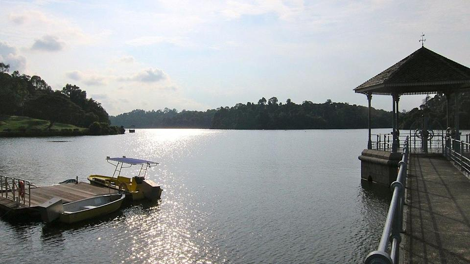 property-near-popular-parks-in-singapore-macritchie (3)