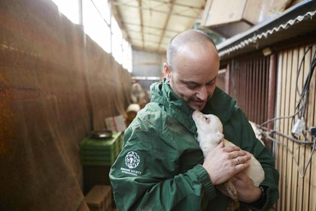 <p>In February 2015, Humane Society International closed down a dog meat farm in Hongseong, South Korea, where dogs were being raised for the dog meat trade. HSI secured an agreement with the farmer to stop raising dogs for food and move permanently to growing crops as a more humane way to make a living. HSI rescuer Adam Parascandola is pictured here with Ruby, who he went on to adopt himself. This image was featured in the charity's celebrity-attended photo exhibition at Parliament on July 11th. (Photo by Manchul Kim/AP Images for Humane Society International) </p>