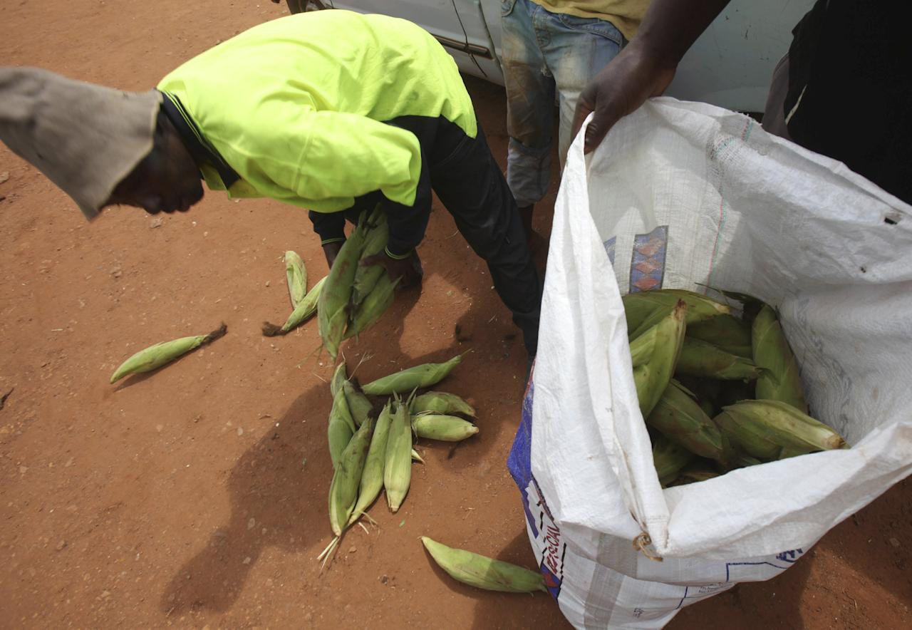 A Zimbabwean man buys maize cobs in Harare