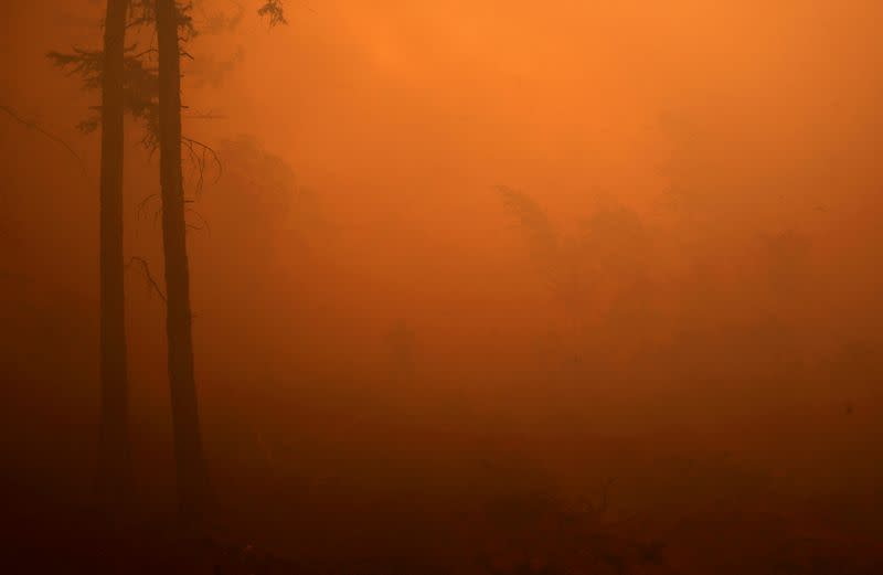 FILE PHOTO: A firefighter works to extinguish a forest fire in Yakutia