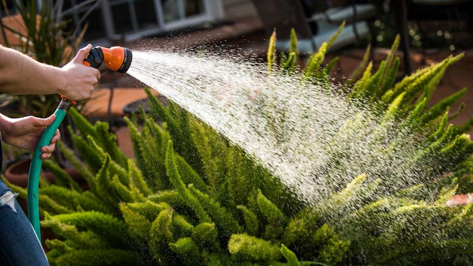 This garden hose is one of the most popular on Amazon, and right now it's on sale.