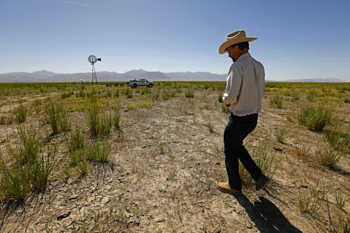Cattle rancher Edward Bartell walks over dry, cracked earth amid native grasses and sage brush in Thacker Pass.