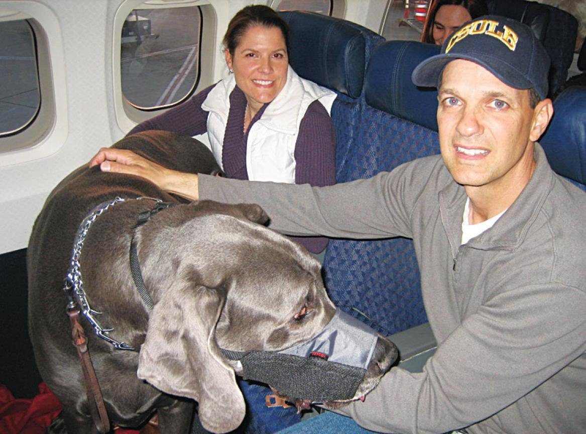 Owners Christie and Dave Nasser with George on a plane.