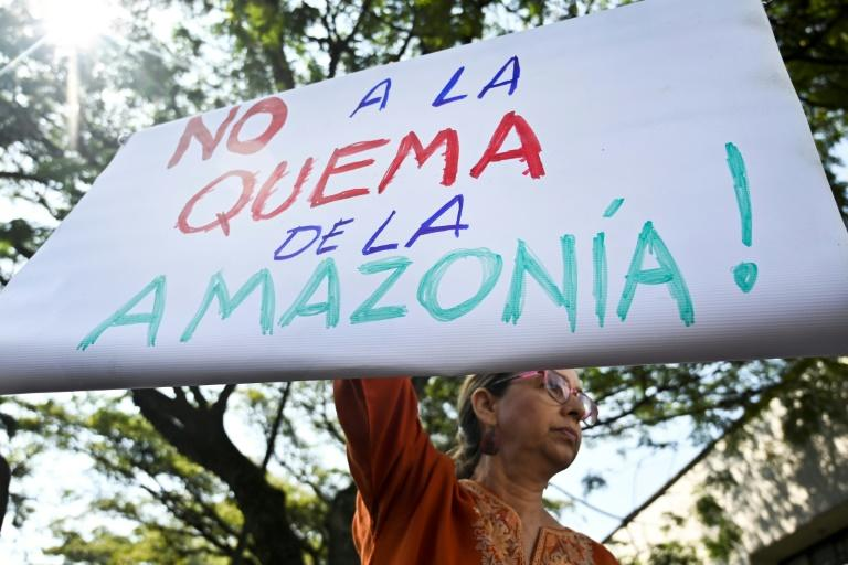 "A climate change activist holds a sign reading ""No to the Burning of the Amazon"" in front of the Brazilian consulate in Cali, Colombia, on August 23, 2019"