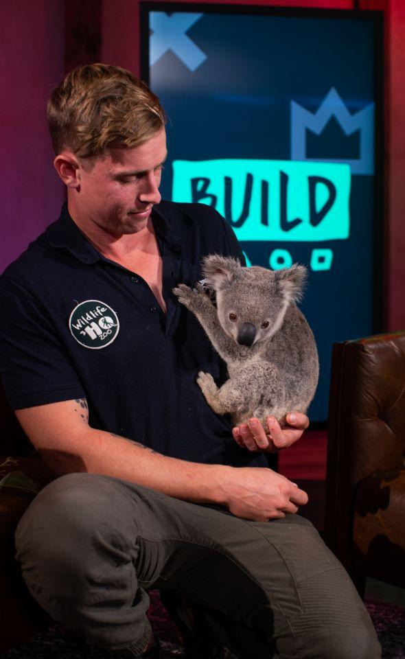 CEO of Wildlife HQ Jarrod Schenk and Arlo the Koala visited Yahoo Lifestyle to give everyday tips for helping koalas survive. Photo: Supplied