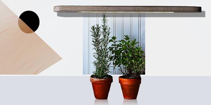 """<div class=""""caption""""> A grow light that isn't hideous and takes up zero counter space? Count us in. <br> <a href=""""https://food52.com/shop/products/4398-grow-anywhere-herb-growbar"""" rel=""""nofollow noopener"""" target=""""_blank"""" data-ylk=""""slk:SHOP NOW"""" class=""""link rapid-noclick-resp"""">SHOP NOW</a>: Grow-Anywhere Herb Growbar by Modern Sprout, $99, food52.com<br> </div> <cite class=""""credit"""">Photo by Rocky Luten/Food52</cite>"""