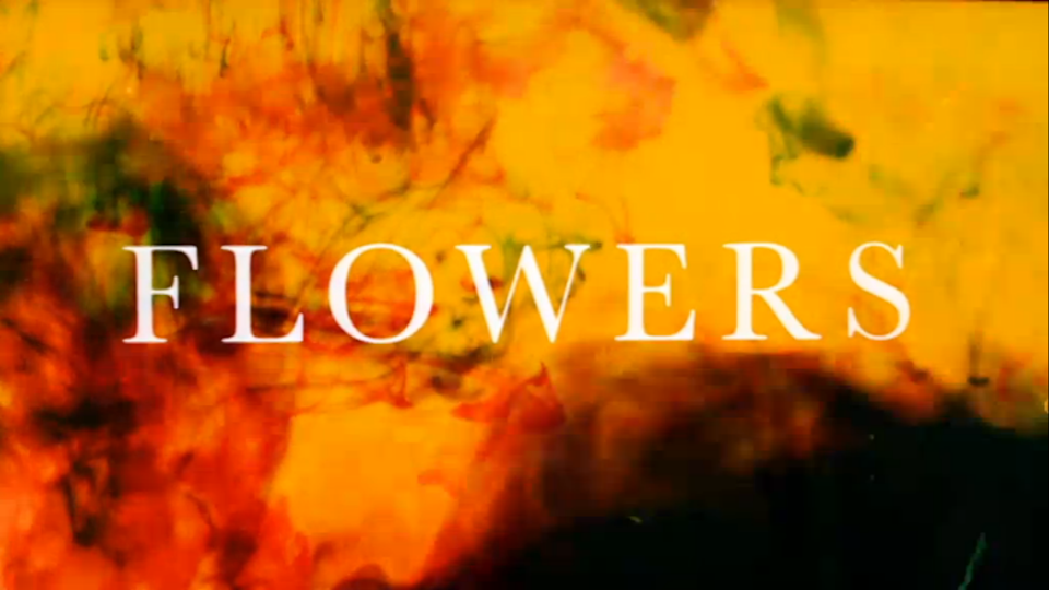 Flowers, a quiet comedy with the feel of a melancholy fairytale, is strikingly brilliant (Channel 4)