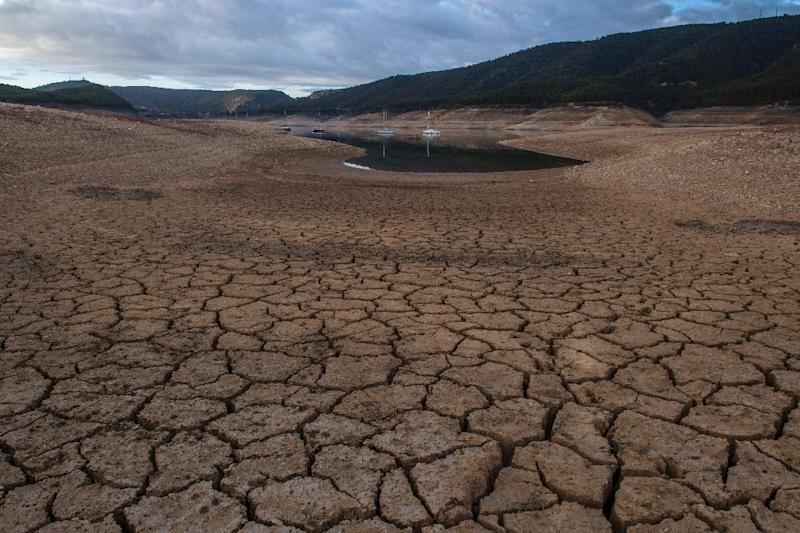 A picture shows low water levels at a reservoir in drought-stricken Entrepenas near Sacedon, Spain on November 24, 2017