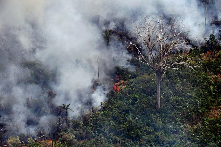This fire, one of hundreds burning in the Amazon region, was photographed about 65 kilometers (40 miles) from Porto Velho in northern Brazil's Rondonia state, on August 23, 2019 (AFP Photo/CARL DE SOUZA)