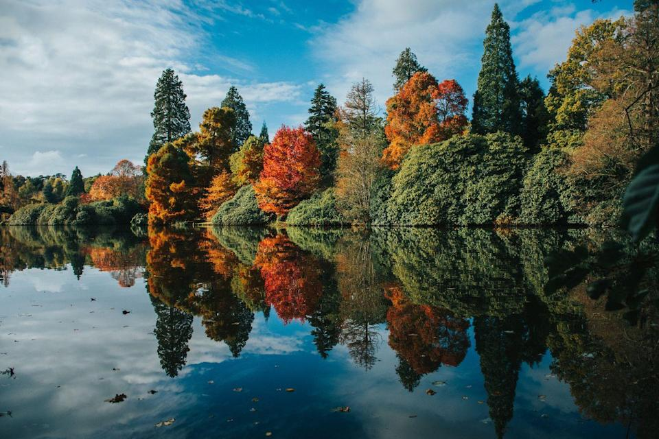 """<p>The National Trust's Sheffield Park is famous for its fiery autumn display. Originally laid out in the 18th century by Capability Brown, it has some of the best colours in the country. To experience all it has to offer, the National Trust recommend visiting in the second half of October. </p><p><a class=""""link rapid-noclick-resp"""" href=""""https://www.nationaltrust.org.uk/sheffield-park-and-garden/features/making-the-most-of-your-autumn-visit-at-sheffield-park-and-garden"""" rel=""""nofollow noopener"""" target=""""_blank"""" data-ylk=""""slk:MORE INFO"""">MORE INFO</a></p>"""