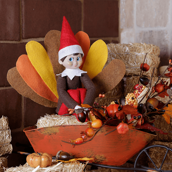 """<p>We can't imagine a cuter first appearance for your resident Elf than on the edge of a platter of delicious <a href=""""https://www.countryliving.com/food-drinks/g1365/turkey-recipes/"""" rel=""""nofollow noopener"""" target=""""_blank"""" data-ylk=""""slk:turkey"""" class=""""link rapid-noclick-resp"""">turkey</a>, dressed in his feathery finest. Talk about a fun Thanksgiving surprise!</p><p><strong>Get the tutorial at <a href=""""https://www.elfontheshelf.com/blog/epic-elf-returns"""" rel=""""nofollow noopener"""" target=""""_blank"""" data-ylk=""""slk:The Elf on the Shelf"""" class=""""link rapid-noclick-resp"""">The Elf on the Shelf</a>.</strong></p><p><strong><a class=""""link rapid-noclick-resp"""" href=""""https://www.amazon.com/42pcs-Fabric-Assorted-Squares-Nonwoven/dp/B01GCLS32M/?tag=syn-yahoo-20&ascsubtag=%5Bartid%7C10050.g.29656008%5Bsrc%7Cyahoo-us"""" rel=""""nofollow noopener"""" target=""""_blank"""" data-ylk=""""slk:SHOP FELT"""">SHOP FELT</a><br></strong></p>"""