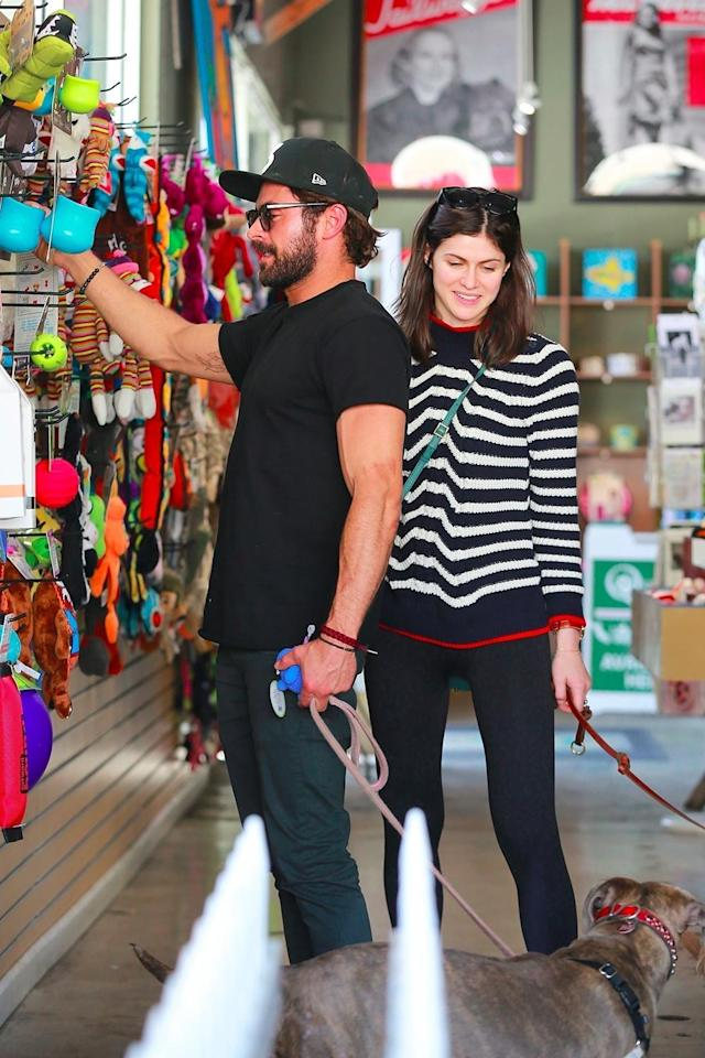 Zac Efron and Alexandra Daddario shop for their dogs in Los Angeles. (Photo: Backgrid)