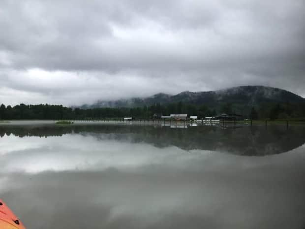 Houses in New Remo, B.C., are shown surrounded by high water on June 2. (Janet Munson - image credit)
