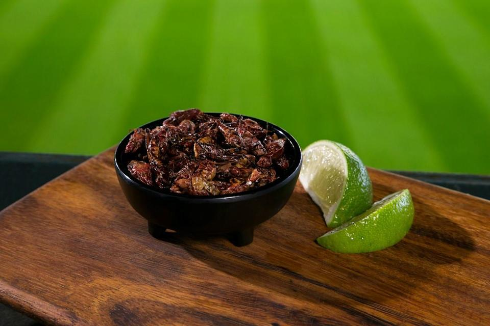 The Mariners' Toasted Grasshoppers (MLB)