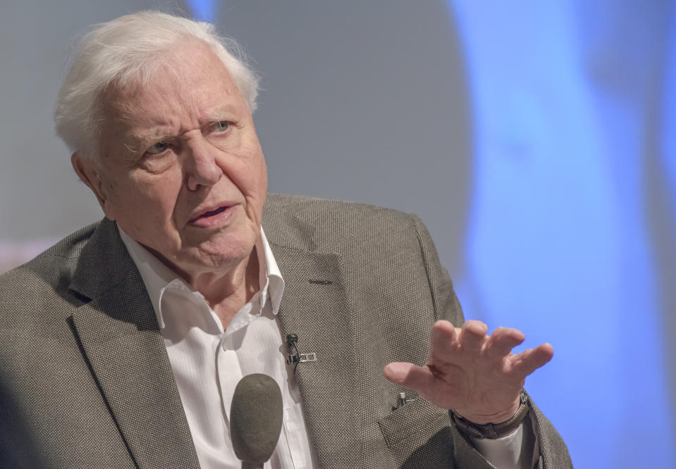 Sir David Attenborough addresses the UK Climate Assembly on January 25, 2020 in Birmingham, England. (Photo by Richard Stonehouse/Getty Images)