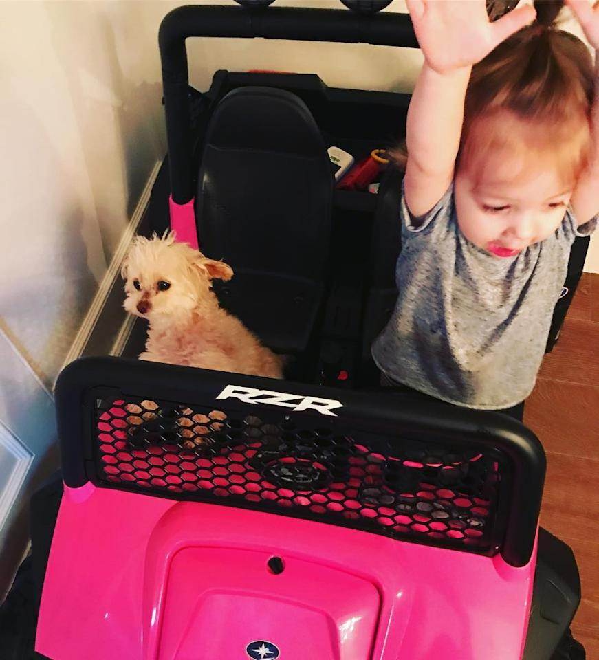 "<p>Duff's daughter, Ryan, seemed to enjoy Super Bowl Sunday as she tooled around with Ashley Tisdale's tiny pooch Maui. ""Biggest SuperBowl fans, right here. Maui & Ryan = BFFs,"" she wrote. (Photo: <a rel=""nofollow"" href=""https://www.instagram.com/p/BQKTD6PBr01/?taken-by=haylieduff&hl=en "">Instagram</a>) </p>"