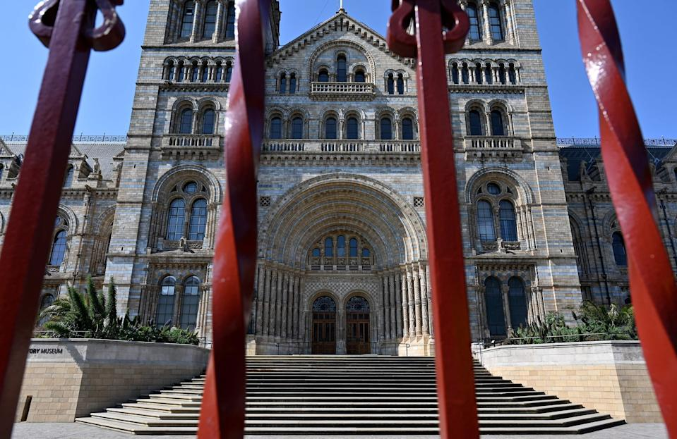 <p>The Natural History Museum, which is currently closed to visitors, will not reopen until 17 May at the earliest</p> (AFP/Getty)