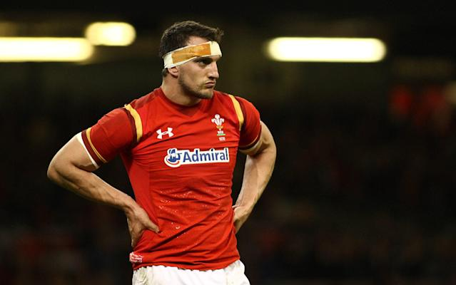 <span>Sam Warburton missed out on a nomination</span> <span>Credit: rex </span>