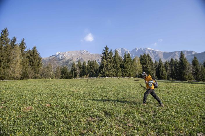 """In this image taken on Thursday, April 23, 2020, alpine guide Ernesto Cocchetti, 57, walks on a slope in Castione Della Presolana, with Mt. Presolana in the background, near Bergamo, northern Italy. Cocchetti normally works the in summer, taking clients as young as 8 on hiking tours, and older clients up to the peaks of """"The Queen of the Orobie"""", but he also takes care of the maintenance of the Italian Alpine Club mountain paths. Cocchetti predicts a return to """"living with nature's rhythms"""" once government restrictions to prevent the spread of COVID-19 will be eased. (AP Photo/Luca Bruno)"""