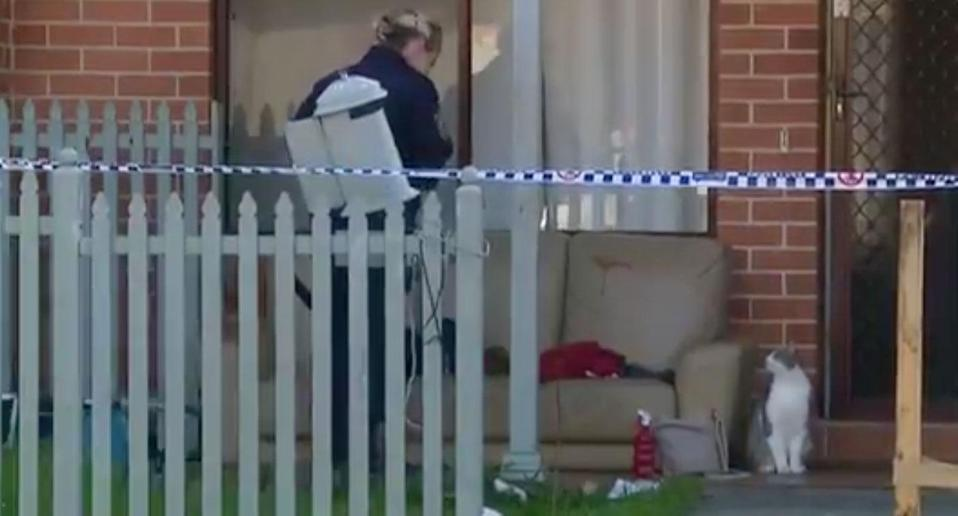 A man is recovering in hospital after being stabbed five times in the chest and neck at a family barbecue in Canley Heights. Source: 7 News