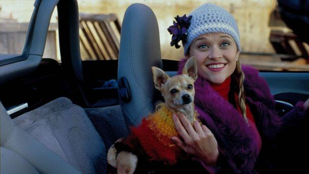 PHOTO: Reese Witherspoon is shown in a scene from Legally Blonde. (Moviestore via Shutterstock)