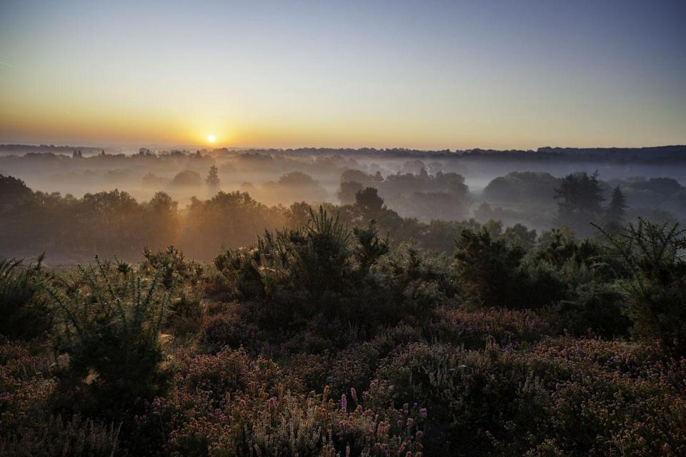 <p>The hills are alive with spectacular sights south of London.</p><p>With more than 60 incredible areas to explore in the Surrey Hills, from The Gibbet and the Devil's Punchbowl to Leith Tower and Frensham Ponds, we're seriously impressed by the expanse of this area, which covers one quarter of Surrey. </p><p>Take a flask of tea and a picnic and make your way across what is known as the Area of Outstanding Natural Beauty to the summit at Leigh Hill. </p><p><strong> Distance from London</strong>: 25.6 miles</p><p><strong>How to get there</strong>: London to Surrey Hills on the A3 in the car ( 1hr 18mins).</p>