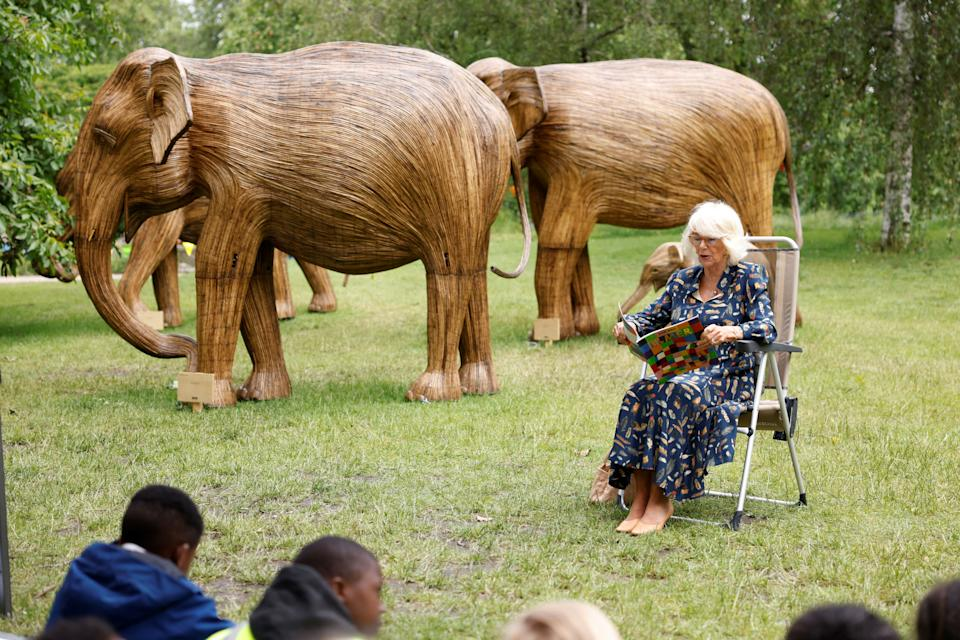 Britain's Britain's Camilla, Duchess of Cornwall launches a story trail to promote child literacy by model Asian elephants in St James' Park in central London on June 22, 2021. (Photo by Heathcliff O'Malley / POOL / AFP) (Photo by HEATHCLIFF O'MALLEY/POOL/AFP via Getty Images)