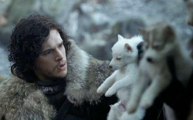 Jon Snow and his direwolf, Ghost - HBO