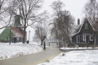 A bicyclist passes windmills of the open air Zaans Museum in Zaandam, as snow and strong winds pounded The Netherlands, Sunday, Feb. 7, 2021. (AP Photo/Peter Dejong)
