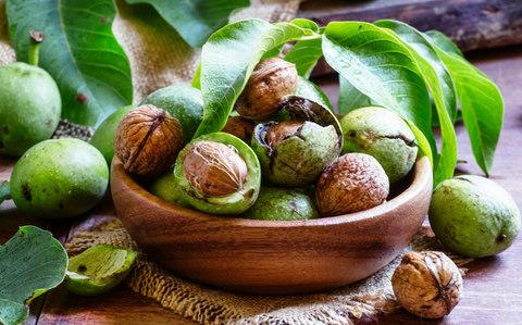 Fresh walnuts in a green shell - Credit: 5PH /iStockphoto