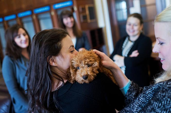 Shawna Blair, of the Senate Periodical Press Gallery, holds her dog George Clooney, a 4-month-old Goldendoodle, for Kate Hunter of Bloomberg News to pet in the Capitol's Senate Press Gallery on March 13, 2015.