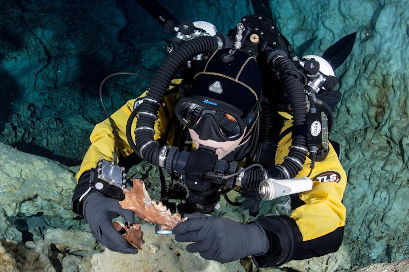 Bones of Ice Age beasts that roamed Earth more than 13,000 years ago have been found in an underwater cave in Mexico. (SWNS)
