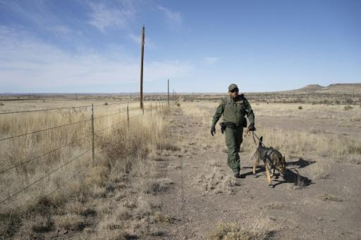 US Border Patrol agents in Texas are responsible for hundreds of miles of terrain and use everything from drug-sniffing dogs to cameras in their patrols