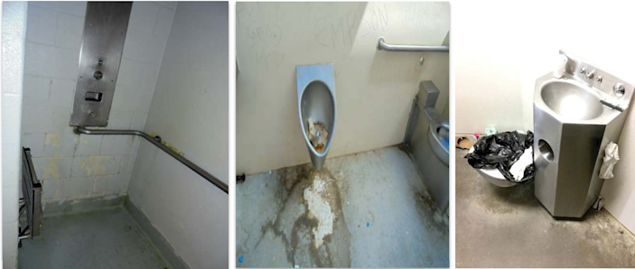 Unsanitary bathrooms this spring: a shower stall with mold, mildew, and peeling paint; an overflowing toilet; and a moldy broken toilet.