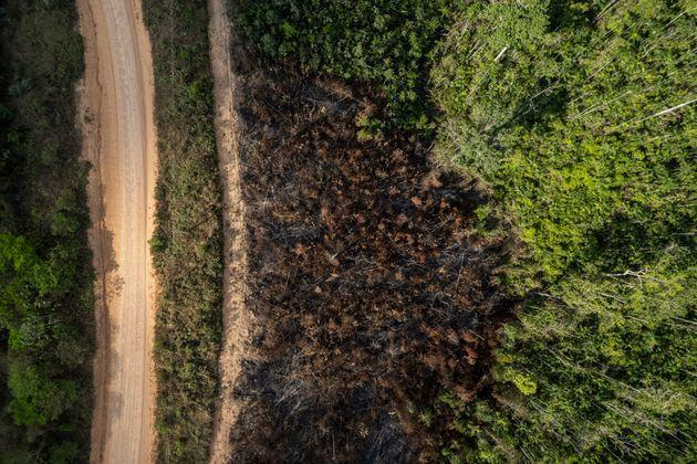 Deforestation and burning on rural properties in the Amazon rainforest. Forest fires on the banks of the Transamazonica Highway. (Photo: Anderson Coelho via Getty Images)