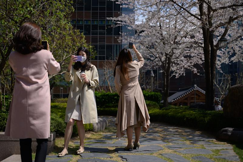 Office workers wearing face masks amid concerns over the COVID-19 novel coronavirus pose for photos with blossoms during their lunch break in central Seoul on March 31, 2020. (Photo by Ed JONES / AFP) (Photo by ED JONES/AFP via Getty Images)