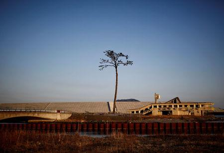 'Miracle Pine', a tree which is said to symbolise hope and recovery after it survived the 2011 tsunami, stands next to a damaged building in front of the newly built seawall in Rikuzentakata, Iwate Prefecture, Japan, March 3, 2018. REUTERS/Kim Kyung-Hoon