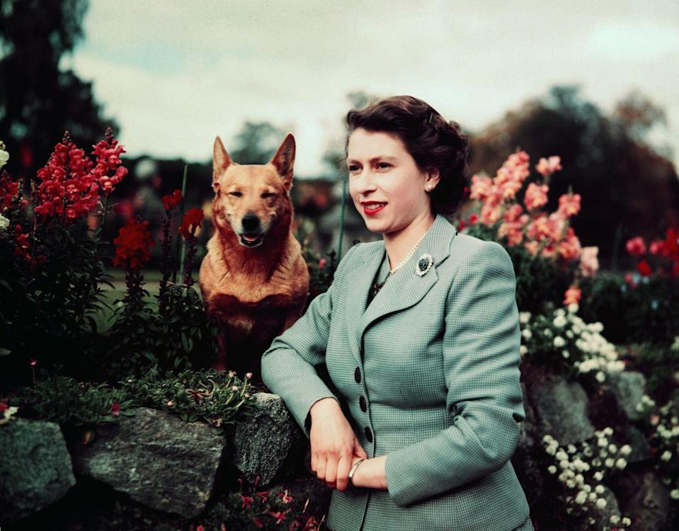 <p>Elizabeth poses with her dog in the garden.</p>