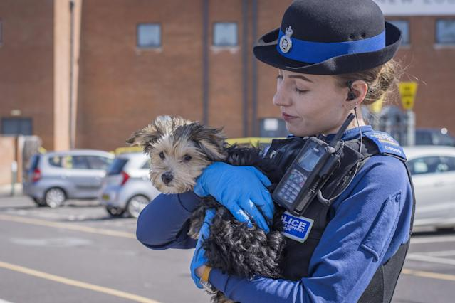 A police community support officer with the dog which was left in a vehicle in Swindon, Wiltshire. (SWNS)