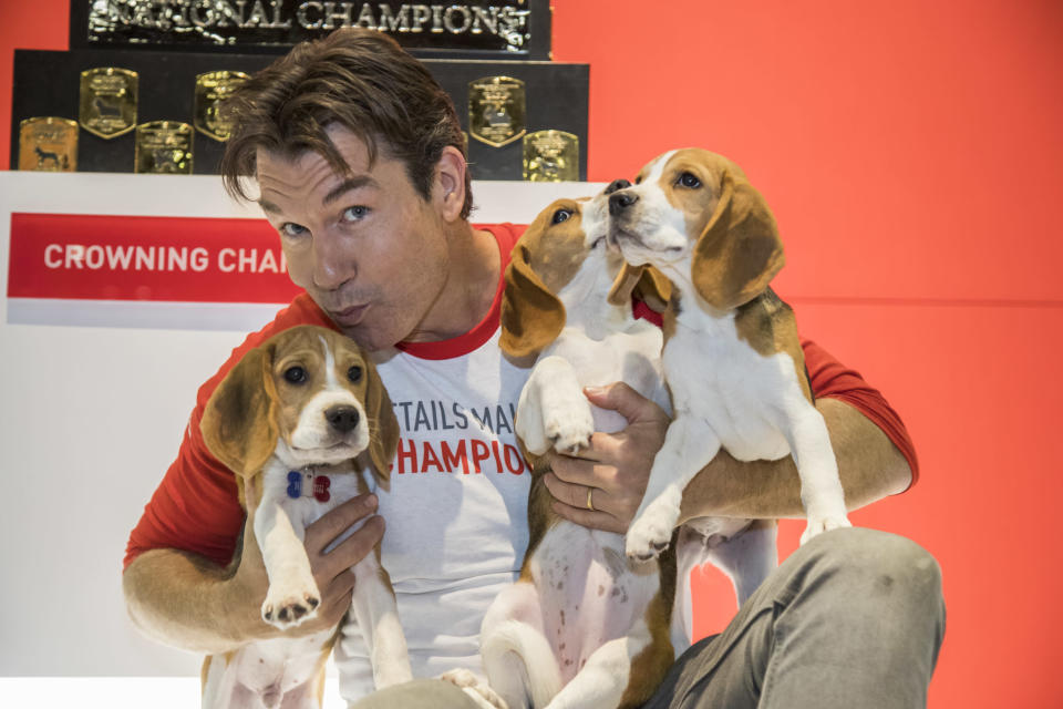 Jerry O'Connell is back as guest host of the AKC National Championship Dog Show Presented by Royal Canin on Jan. 1. (Photo: Jesus Aranguren for Michael Simon)