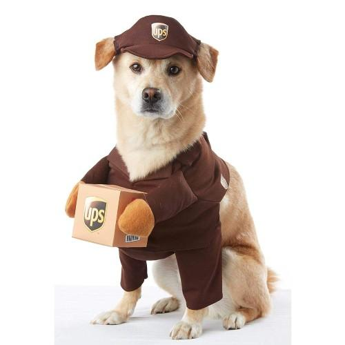 UPS Pal Dog Costume. (Photo: Amazon)