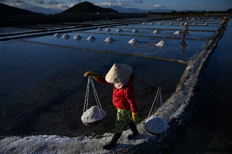 Vietnam's salt farmers toil in the fields during the annual harvesting season from January to June (AFP Photo/Manan VATSYAYANA)