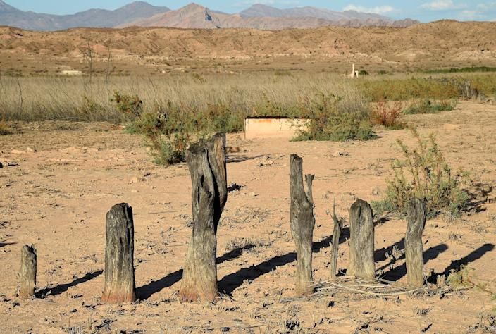 The once flooded ghost town of St Thomas in Lake Mead, Nevada, pictured uncovered in 2015, after epic droughts caused water levels to drop. The on-going crisis could cause water shut offs (Getty Images)