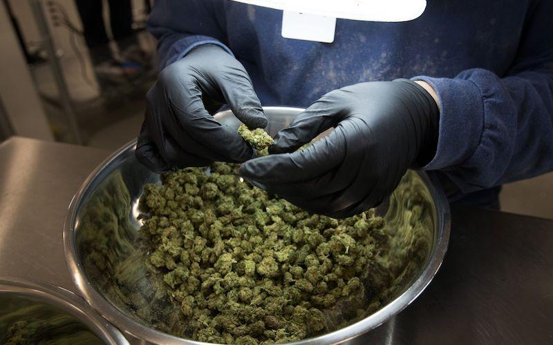 <p>Provincial Justice Minister Andrew Parsons says most citizens surveyed support privately-owned dispensaries, while adding that most health and justice advocates support a government-run model. The justice minister says more details will be available in new legislation expected by next spring. Photo from Getty Images. </p>