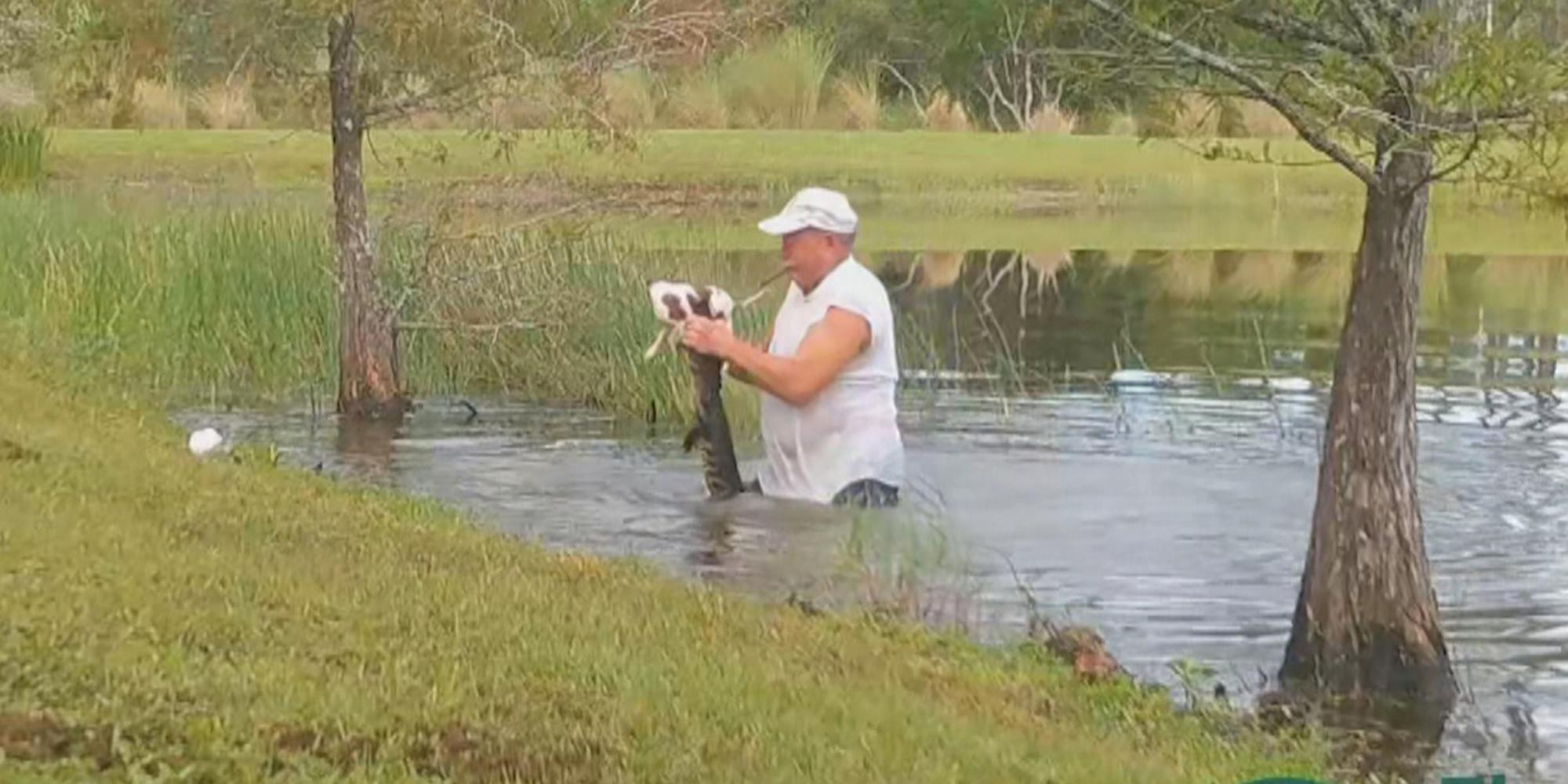 Florida man saves his puppy dragged into pond by alligator thumbnail